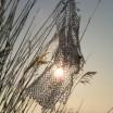 In der Märzsonne am Haff mit Netzstück 1