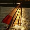 Flagge am Rhein