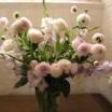 Blumenstrauß Güstrow 1