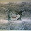 Steinschiff im Algenteppich 1