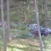 Autos im Wald 1