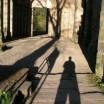 Schatten in Paulinzella 3