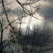 Abendlichtspiegelung Stolper Dorfteich 1