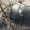 Abendlichtspiegelung Stolper Dorfteich 2