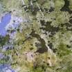 Spiegelung alter Gartenbetontisch 1