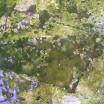 Spiegelung alter Gartenbetontisch 2