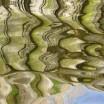 Uferspiegelung am Haff 1