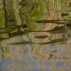 Uferspiegelung am Haff 2